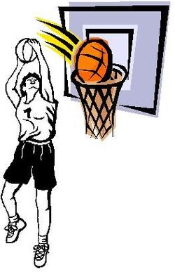Match Terres Froides Basket