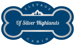 Elevage Canin Of Silver Highlands